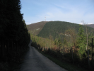 Imagen de la ruta